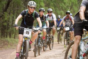 Pine Forest Race